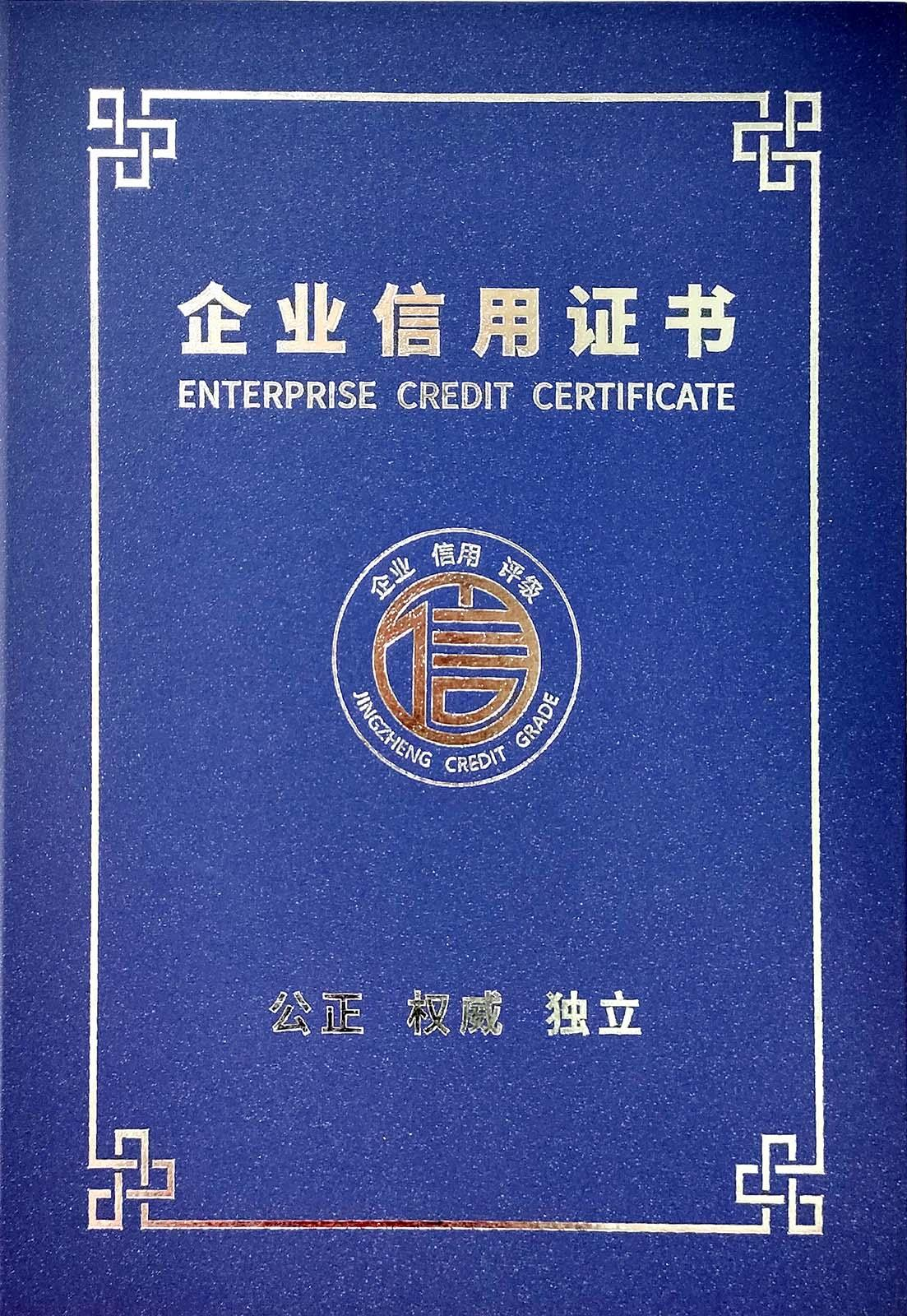 Enterprise Credit Certificate